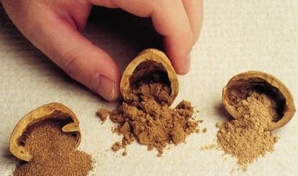 Ground Walnut Shells